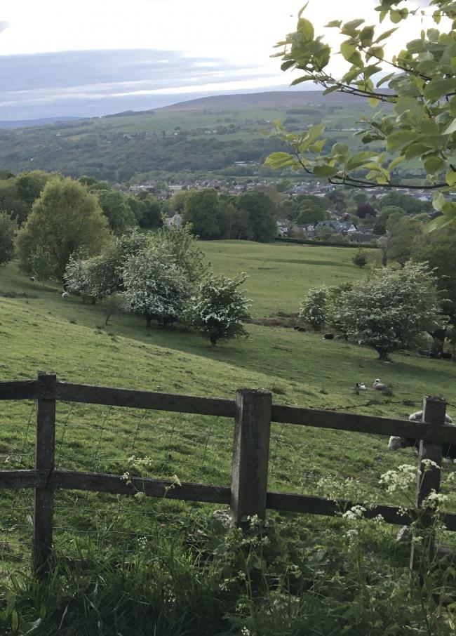 130 houses are proposed on Green Belt off Wheatley Grove in Ben Rhydding in Bradford Council's Local Plan