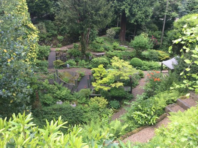 The part-woodland garden of Lyn and Phil Short, at 5 Hill Top, Westwood Drive, Ilkley, will open its gates to visitors