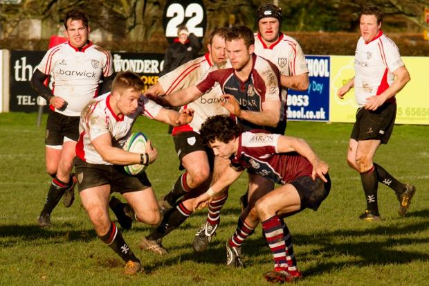 Ilkley's Steve Nolson tries to break through Picture: ruggerpix.com