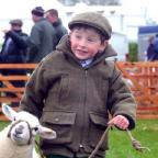 William Hall, four, showing his two-month-old lamb Daisey in the young shepherd class