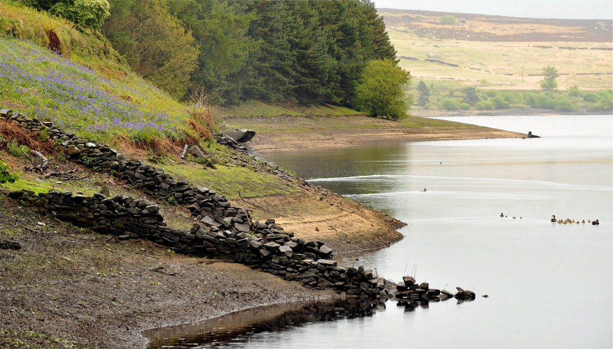 Yorkshire Water reduces amount of water lost to leaks
