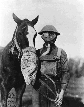 Gas masks for soldier and horse during the First World War