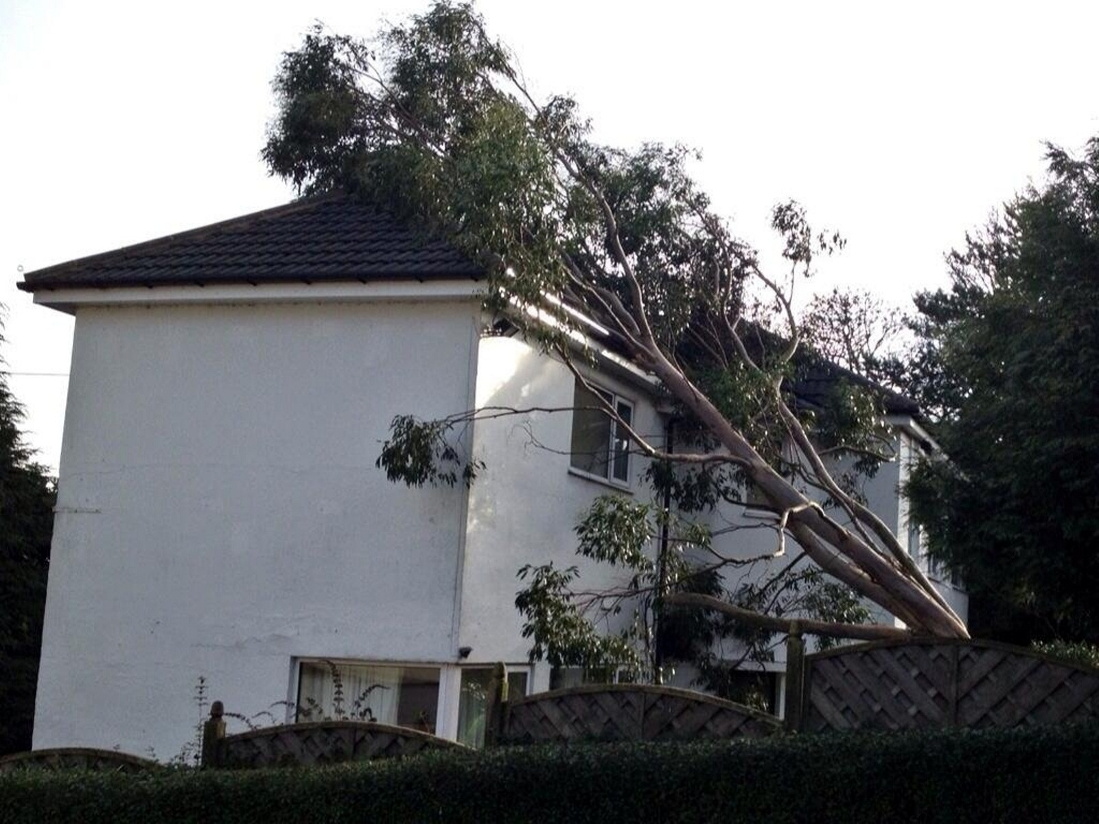 A tree that was blown over in the storms onto a house in Guiseley