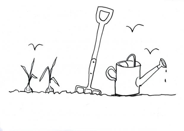 Alan Titchmarsh's doodle for National Doodle Day 2014