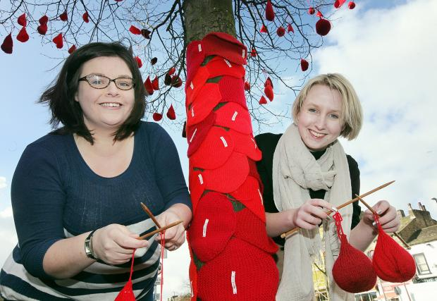 Wharfedale Observer: Burley-in-Wharfedale mum Lauren McDonnell, left, and Rebecca Willis, a knitting blogger, highlighting that blood doesn't grow on trees