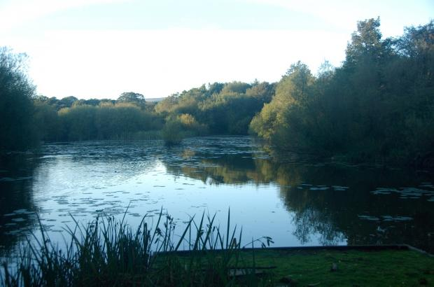 Ben Rhydding Gravel Pits Local Nature Reserve