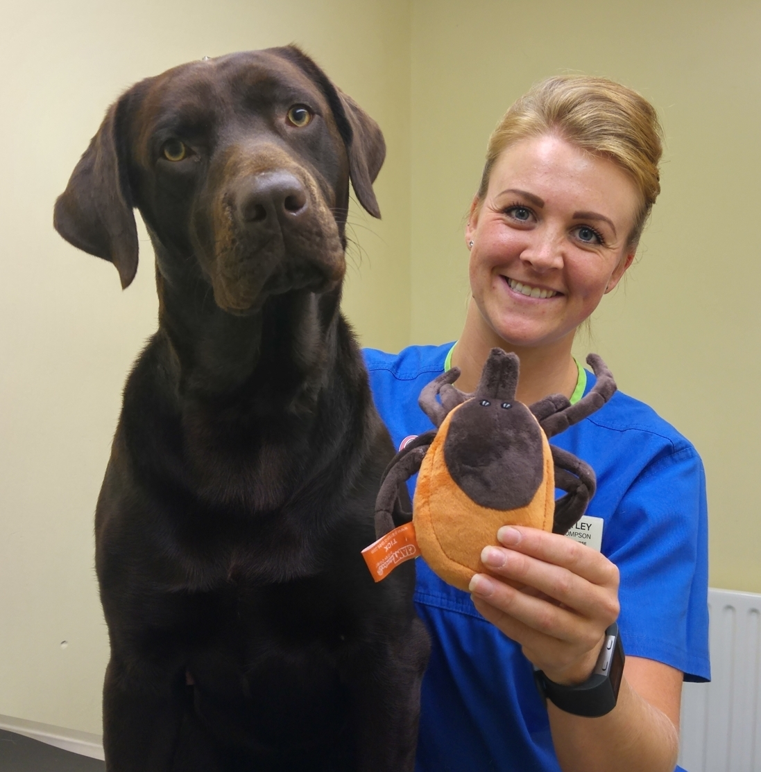 White Cross Vets veterinary nurse Hayley Thompson with pet Paddy and a giant display tick.