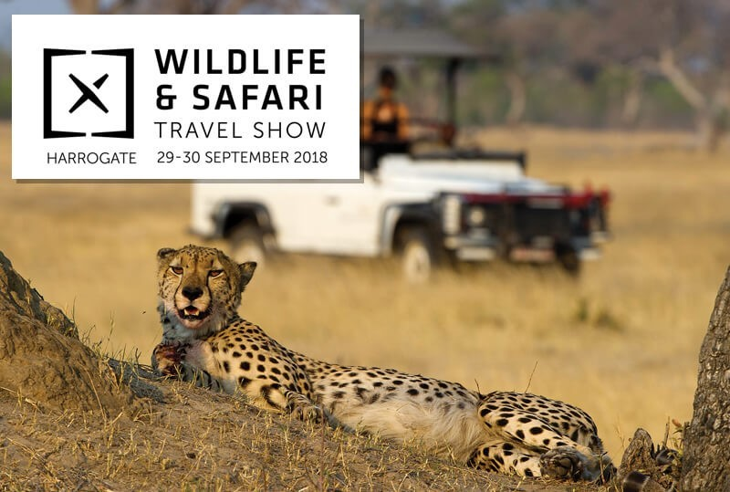 Coming to Harrogate - the Wildlife and Safari Travel Show