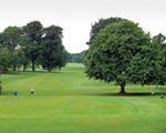 Wharfedale Observer: Crow Nest Golf Club