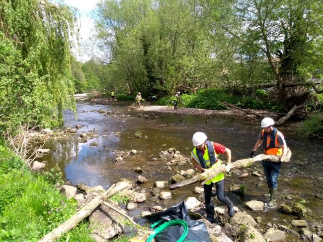 Volunteers clearing driftwood from the River Wharfe at Otley