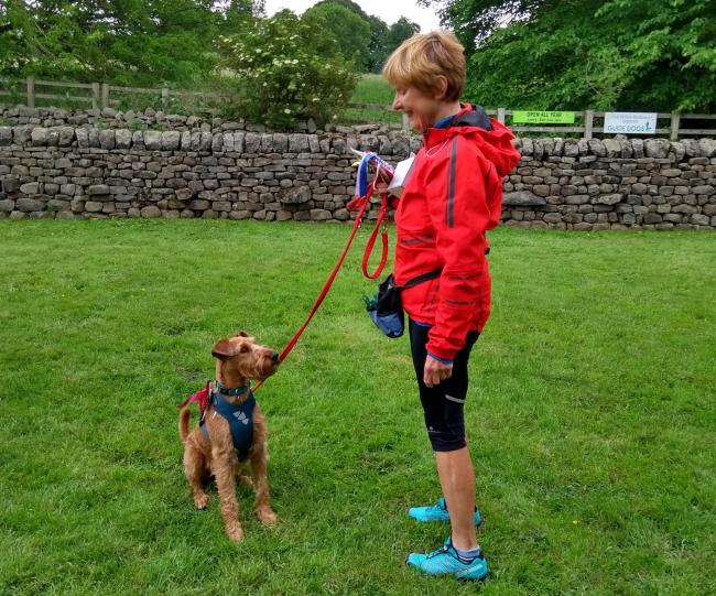 Irish Terrier Seamus with owner Hilary Schofield at Cock Pit Farm Tea Rooms' Dog Show